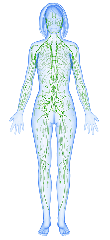 7 Ways to Improve Lymphatic Health in Azle
